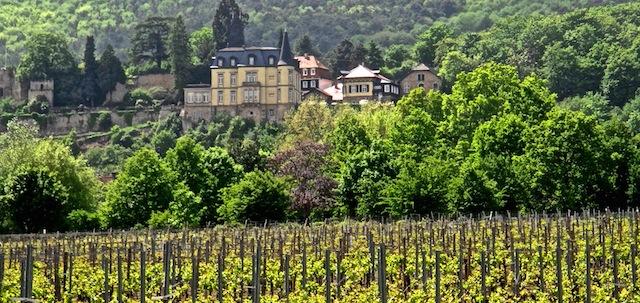 Pfalz, Foto Foodhunter, Sabine Ruhland