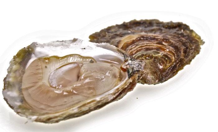 Belon – wo die Auster zur Luxusauster wird