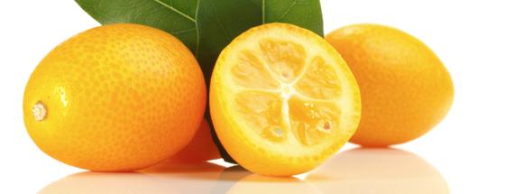 Kumquats - die kleine Mini-Orange