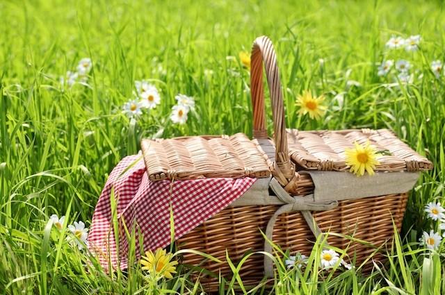 Picknick. Eine Mahlzeit, die dem Vergnügen dient