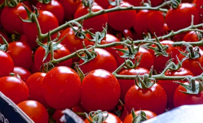 Rezept Tomatensuppe – ohne Sahne