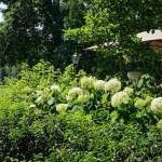 Best Place in Baden-Baden: Rizzi Restaurant