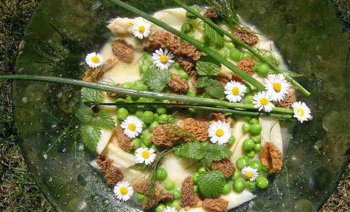 Rezept: Salat von Wildspargel – Morchel – Kalbszunge