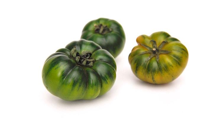 Grüne Tomaten. Gut und ein bisschen giftig
