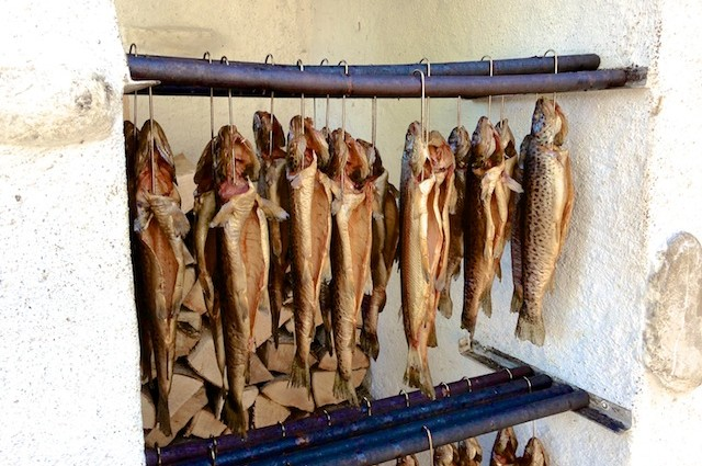 29. August 2015: Fischerfest Schlossfischerei am Fuschlsee