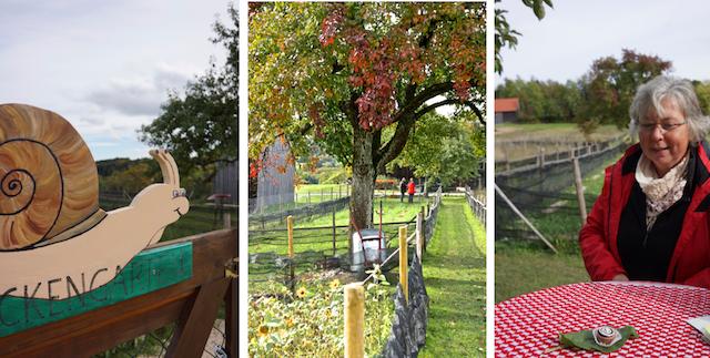 Albschnecke, Schneckengarten, Rita Goller, Foto Foodhunter (1)