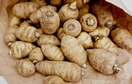 Kerbelknolle - gesunde Wurzel, edelsüßer Kastaniengeschmack