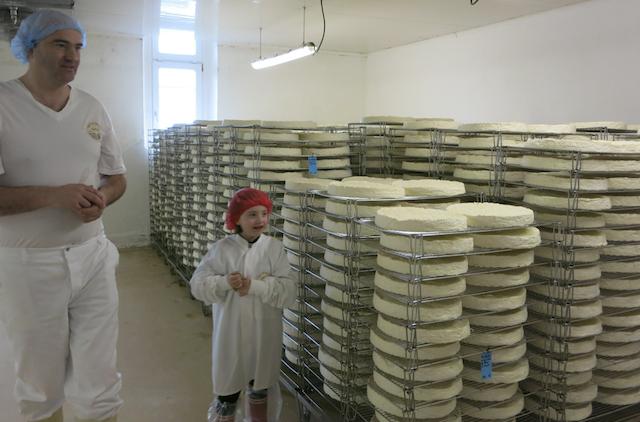 Brie de meaux, Foto Foodhunter