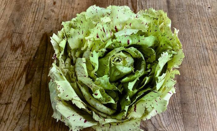 Forellenschuss. Alte Salatsorten, entdeckt auf dem Berliner Wochenmarkt