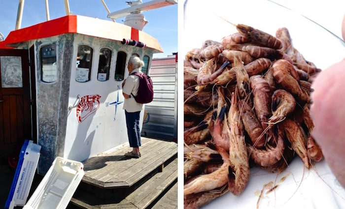 Krabben pulen - so geht's richtig