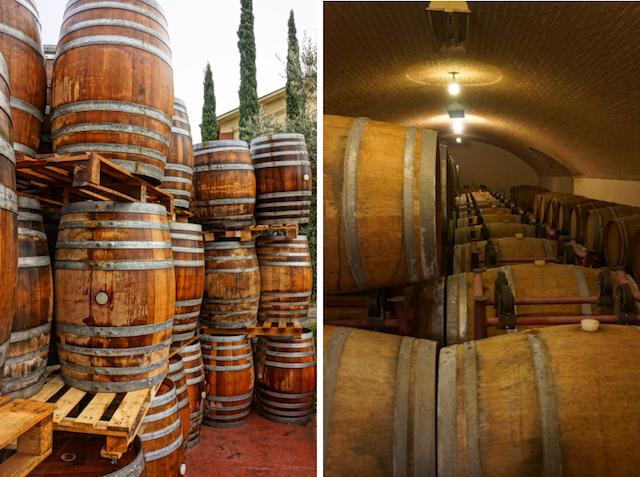 Weingut Monte del Fra, Gardasee, Foto Sabine Ruhland, www.foodhunter.de