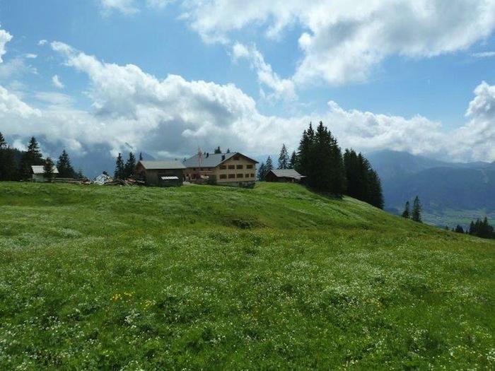 Alpe Wildmoos