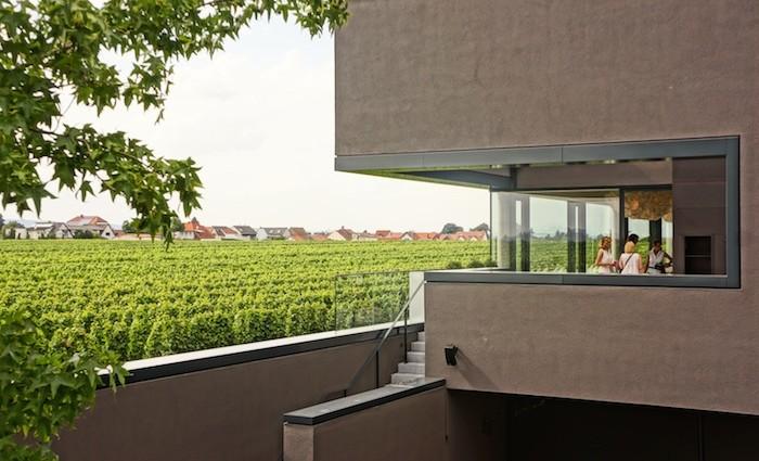 Markus Schneider. Weingut 2.0