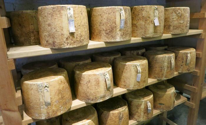 """""""EU-Käse"""" – Interview mit Bronwen Percival von Neal's Yard Dairy"""