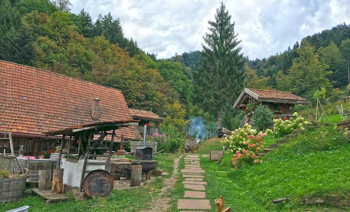 Bader Alm im Schwarzwald.