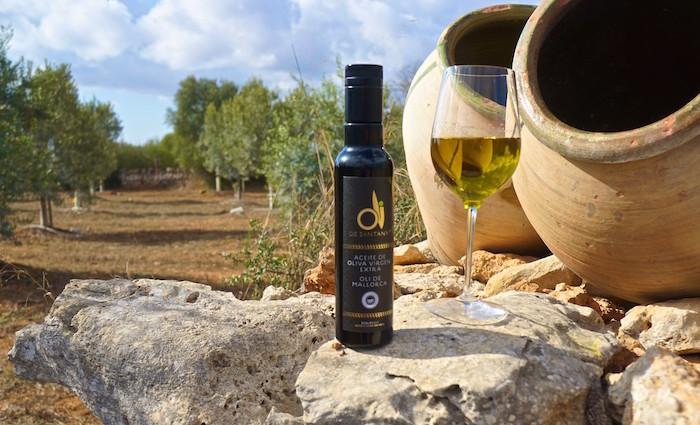 Oli de Santanyi – Olivenernte auf Mallorca