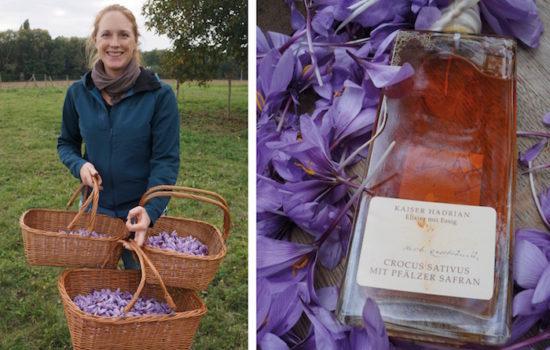 Safran aus der Pfalz: Zauberpflanzen-Balsam vom Doktorenhof