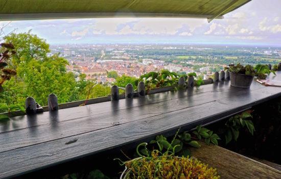 Anders auf dem Turmberg. Hofbistro mit Panorama